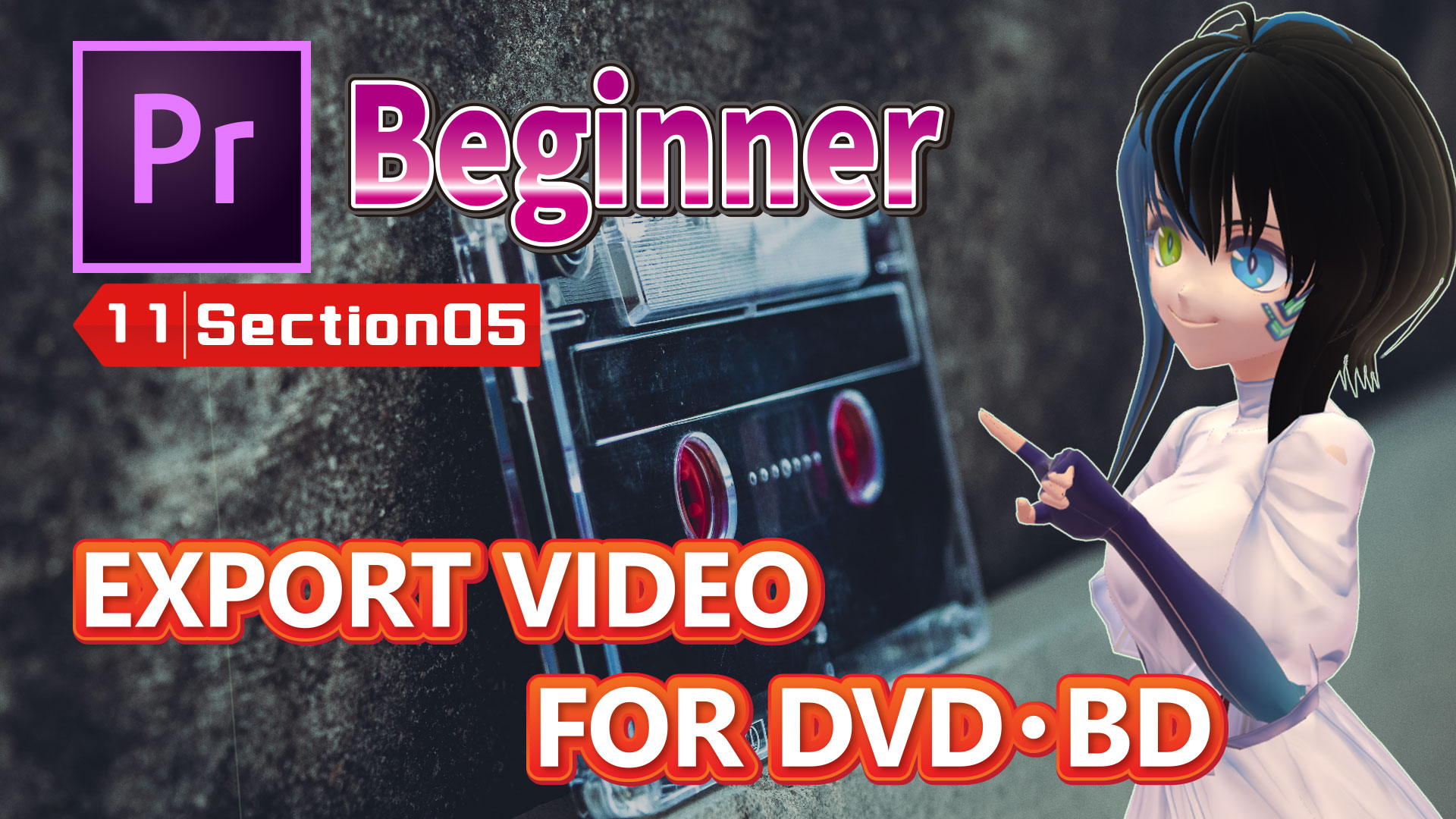 EXPORT VIDEO FOR DVD・BD