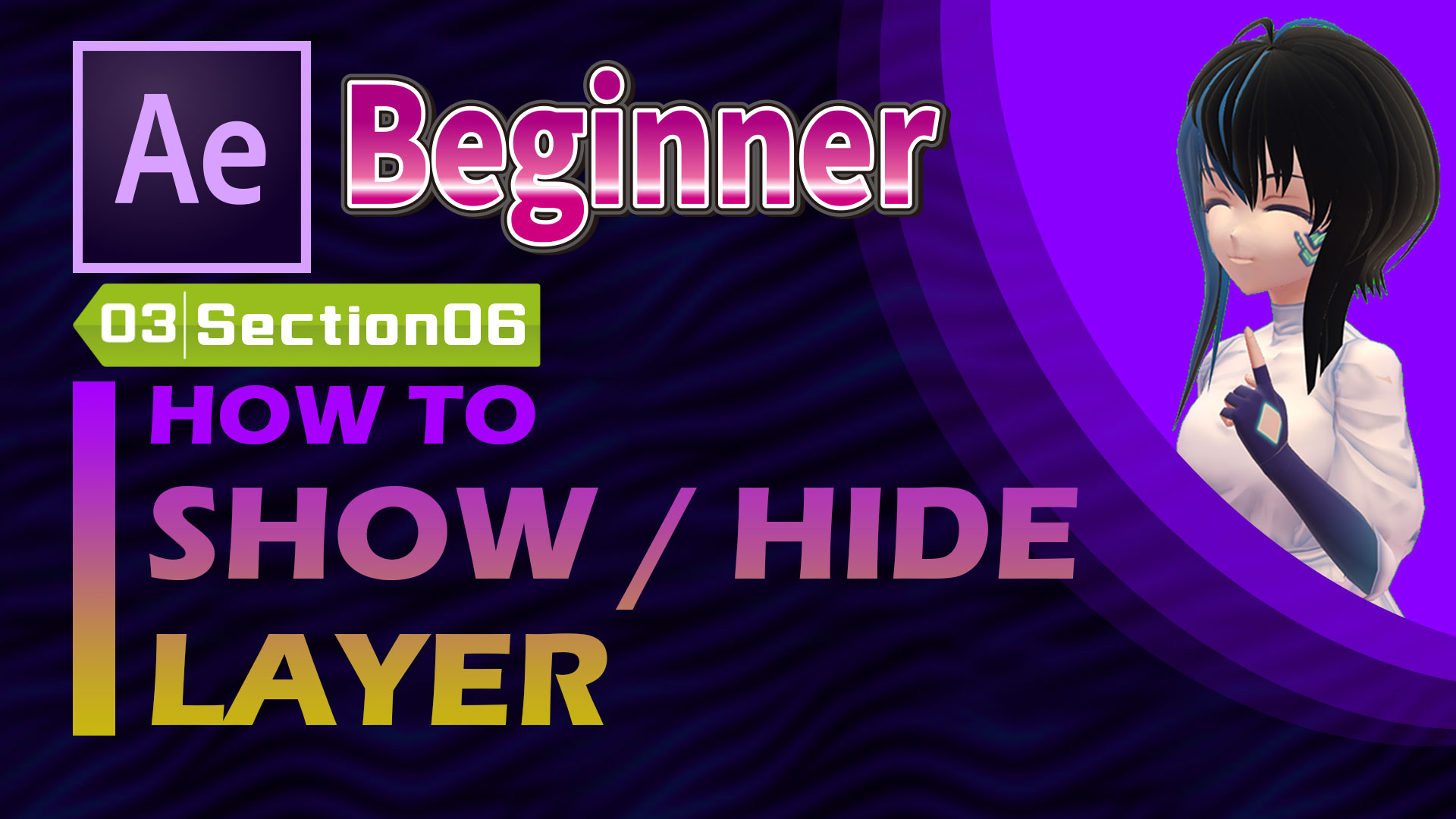 HOW TO SHOW / HIDE LAYER
